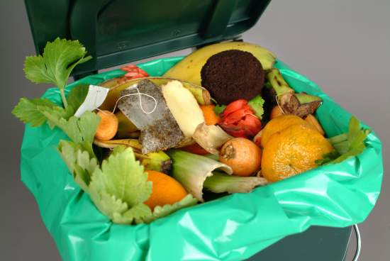 How should I dispose of food waste?